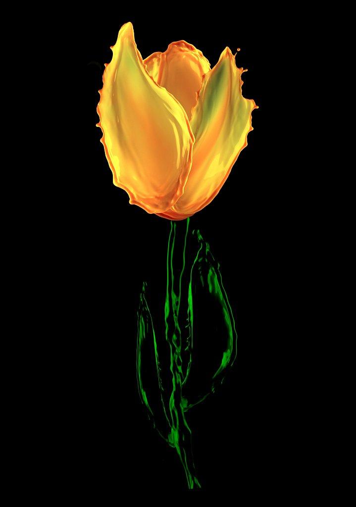 IMG-3121-yellow.jpg